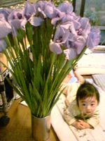 花菖蒲と子供
